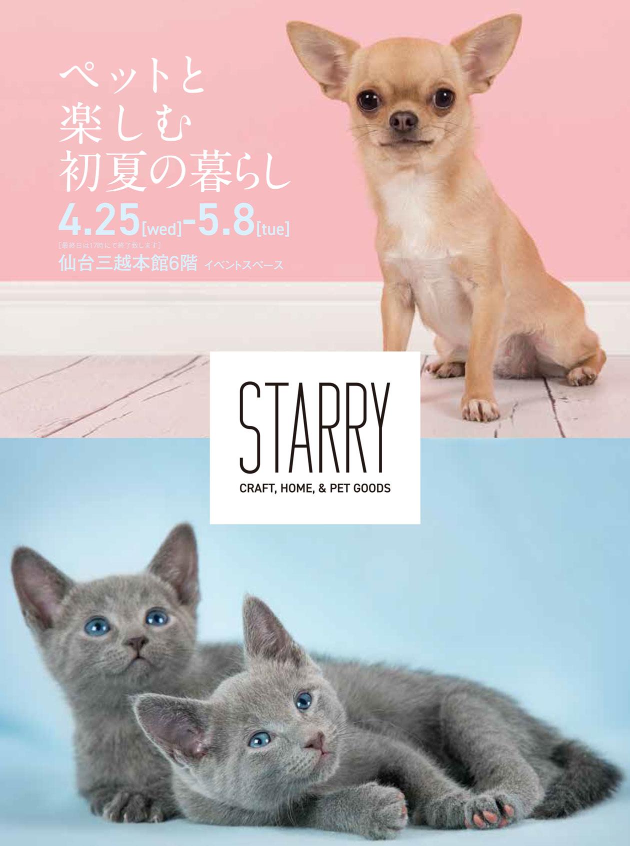 STARRY ANIMAL,ペットと楽しむ初夏の暮らし